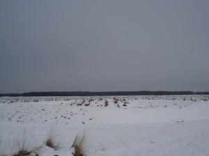 ringwalheuvel in sneeuw